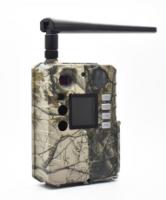 Vyskúšali sme fotopascu BG310-M v ostrom nasadení